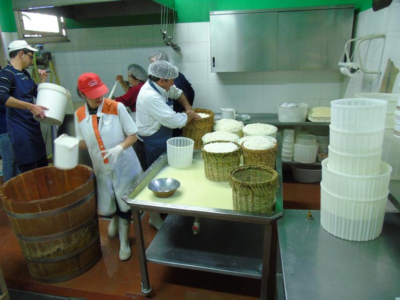 Un momento della produzione del Pecorino Siciliano DOP presso il Caseificio Cangemi di Partanna (TP)