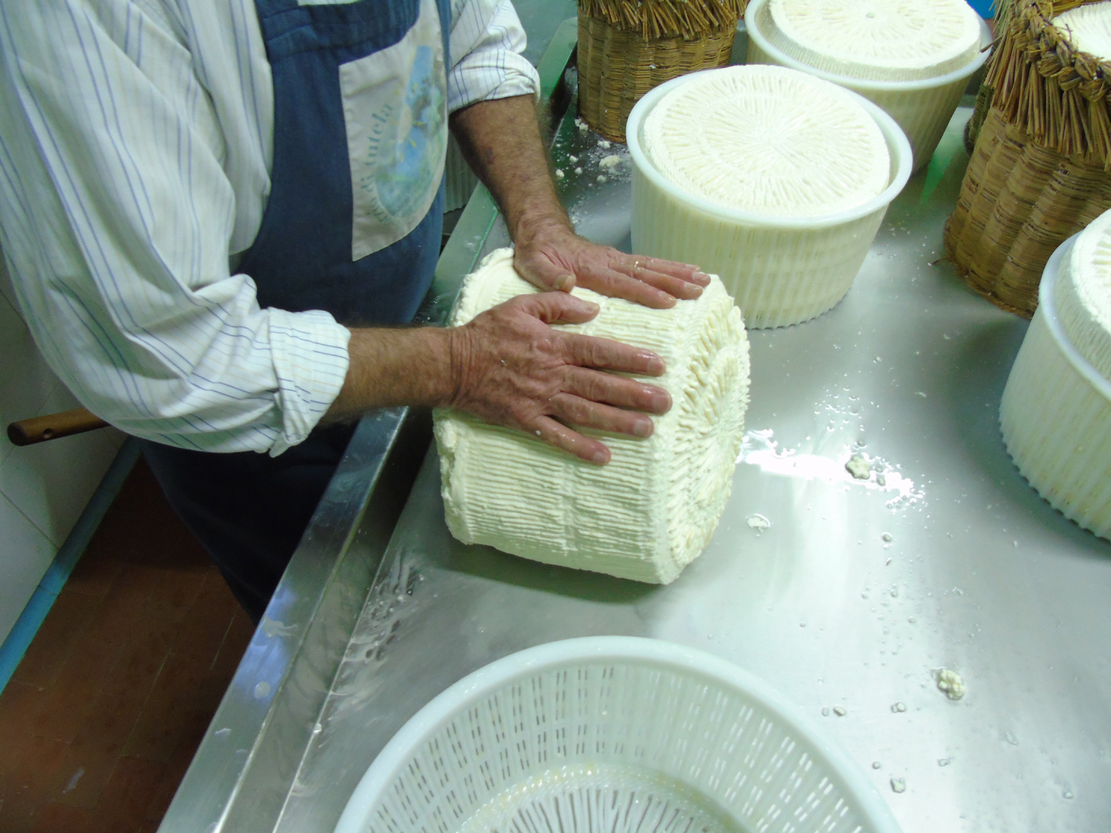Il compattamento di una forma di Pecorino Siciliano prodotto presso il Caseificio Cangemi di Partanna (TP)